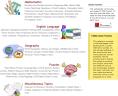 WorksheetWorks2